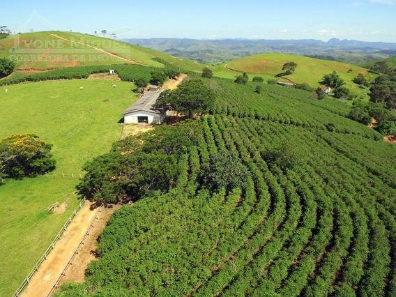 Fazenda Em Avelar - Paty Do Alferes - 1370
