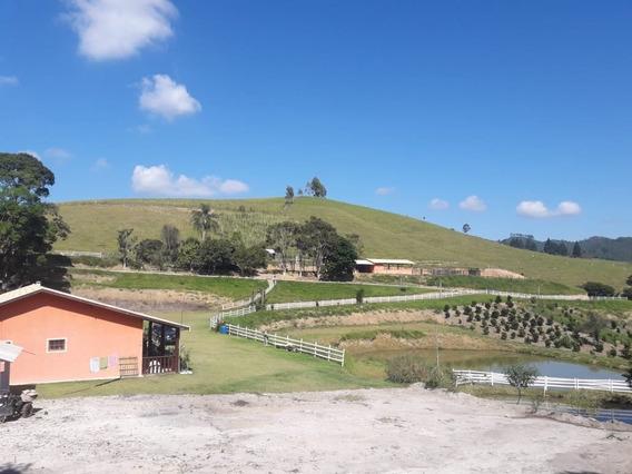 Fazenda A Venda No Bairro Centro Em São Luiz Do Paraitinga - Fazv967-1