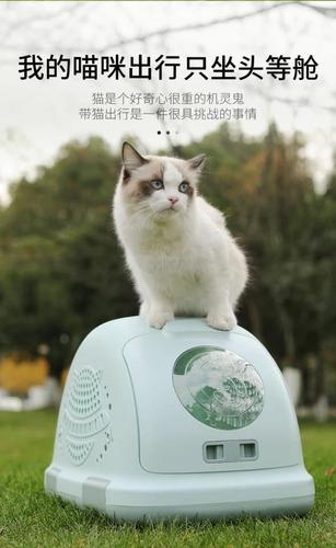 Transportadora Rígida Premium Para Gatos Excelentes!