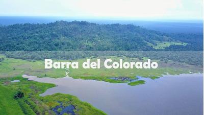 Finca Con Escritura | Barra Del Colorado