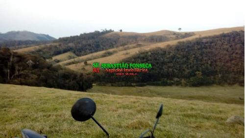 Área Plana 140 Alqueires Com Nascentes Em São Luiz Do Paraitinga - 1512