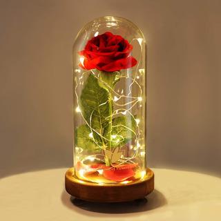 Rosa Eterna De Seda Roja En Cúpula De Vidrio Con Luces Led