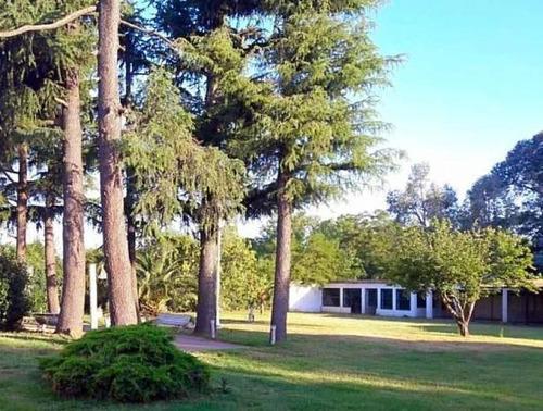 Venta Casa Quinta En Lobos 500m2 Con Mejoras