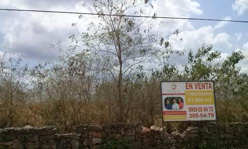 Imagen 1 de 3 de Terreno En Venta  Santa Gertrudis Copo, Mérida Yucatán