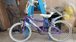 Bicicleta De Paseo Nena Vairo Rodado 20
