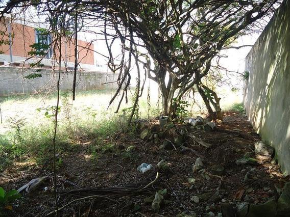 Terreno Residencial À Venda, Enseada, Guarujá. - Te0425