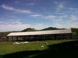 Vendo Hermosa Propiedad De 35 Hectáreas En Paraguari. E2167.