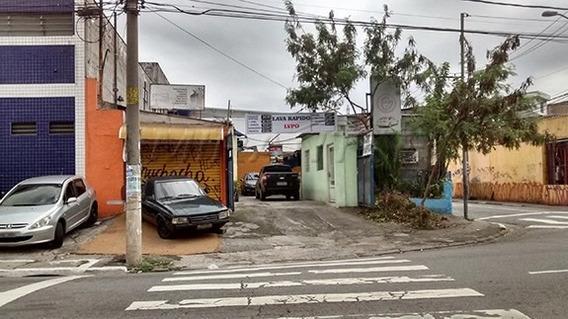 Terreno Em Casa Verde - São Paulo, Sp - 121694