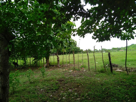 Terreno En Santiago Veraguas
