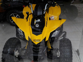 Can-am Ds 250 250 2012