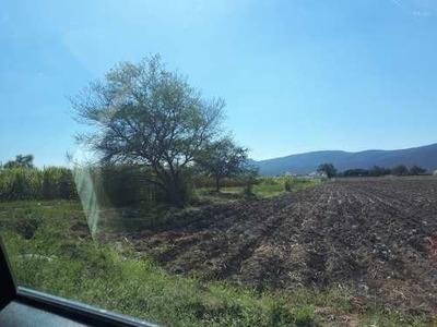 Terreno En Venta En Yautepec, Morelos