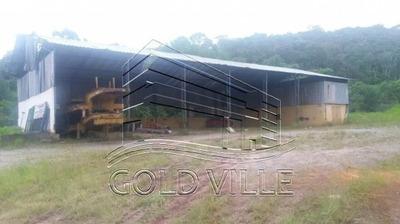 Galpão Industrial Para Locação, Centro, São Lourenço Da Serra - Ga1306. - Ga1306