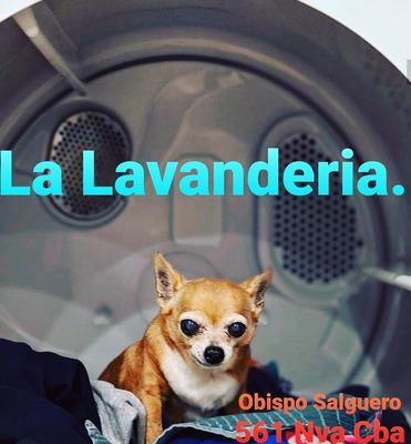 Lavanderia Y Tintoreria