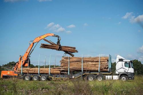 Imagen 1 de 13 de Remolque Forestal Afrit 48 Toneladas