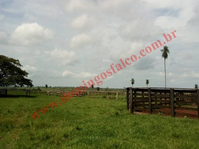 Venda - Fazenda - Zona Rural - Tacuru - Ms - D0267