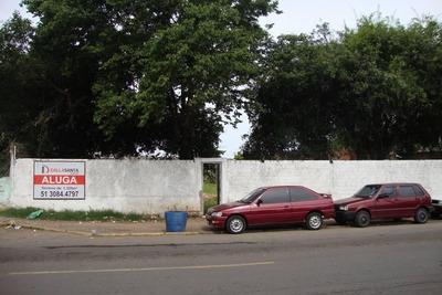Terreno Residencial Para Locação, São Luiz, Gravataí. - Te0574