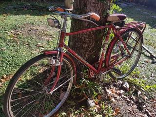 Bicicleta Inglesa Legnano R28