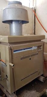 Calentador Caldera De Gas Para Alberca Mass Ter Cal