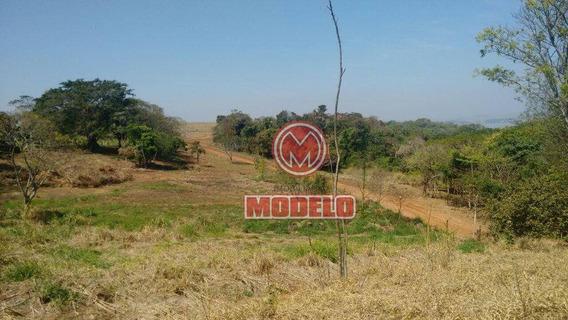 Terreno À Venda No Loteamento Fechado Serelepe-santa Maria Da Serra. - Te0555
