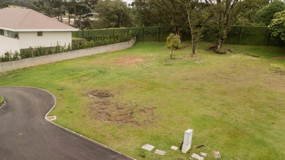 Terreno Padrão Em Curitiba - Pr - Te0006_impr