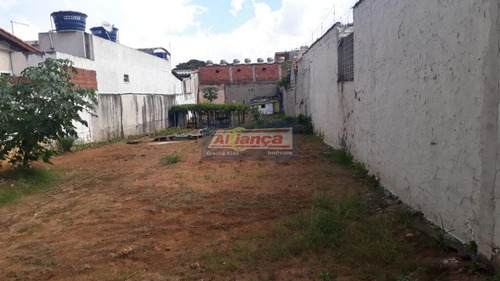 Terreno À Venda, 500 M²- Jardim Tranqüilidade - Guarulhos/sp - Cód. Te0331 - Ai9708
