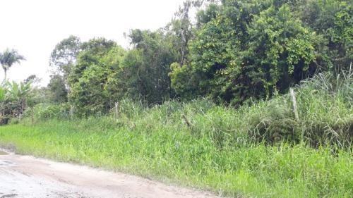 Imagem 1 de 5 de Terreno De Chácara, Medindo 3000 M²,em Itanhaém-sp 7880-pc