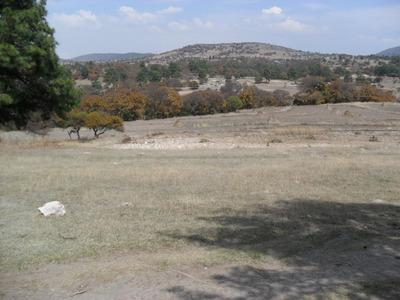 Terreno Rustico 500 M2 En Santa Cruz Alpuyeca