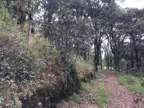 Imagen 1 de 2 de Vendo Terreno En Pueblo Mágico De Real Del Monte