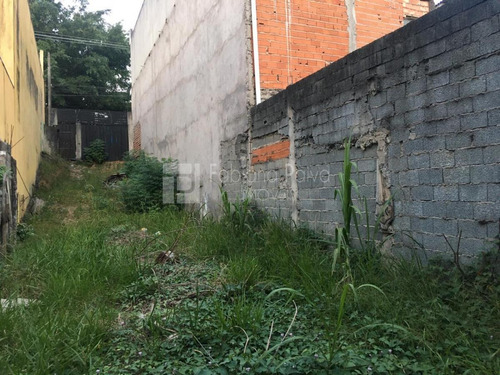 Imagem 1 de 7 de Terreno Para Venda Em Itaquaquecetuba, Vila Virgínia - Te0199_1-2075957