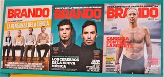 Revistas Brando 2011 / 2013