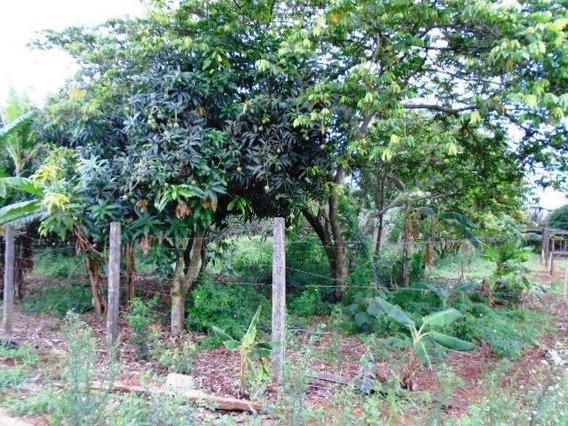 Terreno Para Venda Em Araras, Desmembramento Chácaras Zago - V-180