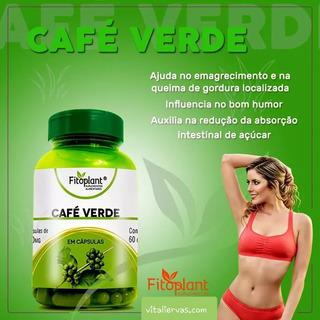 Café Verde 60 Capsulas 500 Mg - 5 Frascos