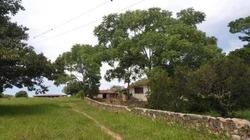 Terreno En Venta En Ribera De Piedra Parada En Ocozocoautla, Chiapas