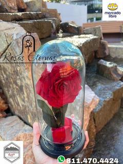 Rosa Eterna Natural Que Dura Años