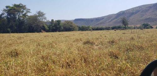 Fazenda De Gado Arinos Mg 2.250 Hectares 65.000,000,00 - 38491
