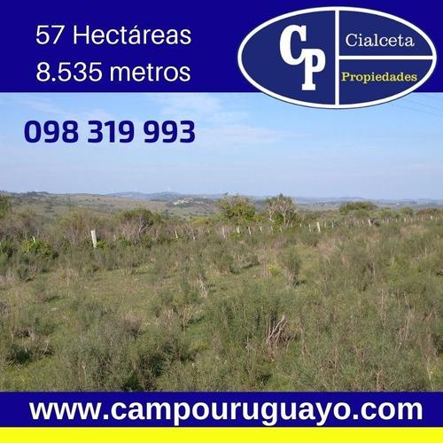 Campo Pintoresco, Con Altura, Cañada