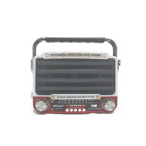 Radio Caixa Acústica De Som Potência E Luzes
