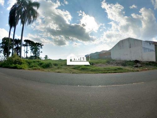 Terreno Para Venda - 02950.8053