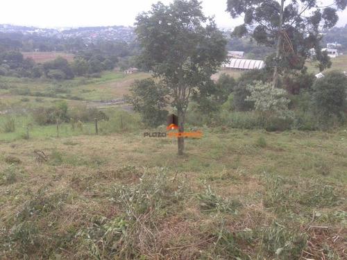 Imagem 1 de 2 de Terreno - Seminário - 1064