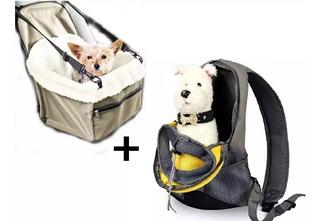 Mochila Transportar Perros + Canasto Cubre Asiento Auto