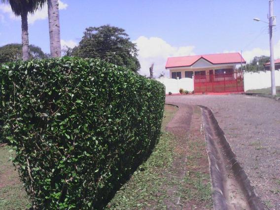 Orotina Lote-quinta Cerca De Parque Industrial