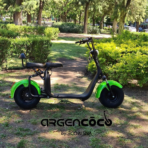 City Coco 1500 Watts / Eco Alsina/ Bateria Extraible 20ah