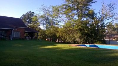 Alquilo Casa Quinta Con Amplio Jardin, Galeria Y Parrilla