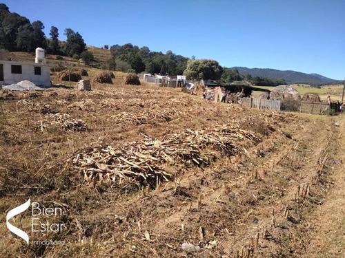 Imagen 1 de 5 de Terreno En Venta San Felipe