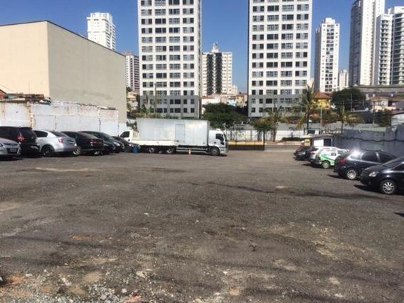 Area Excelente No Analia Franco- São Paulo/sp - Ta2434
