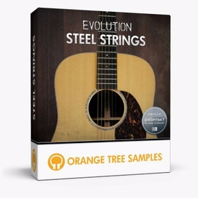 Evolution Acoustic Guitar Steel Strings Violão