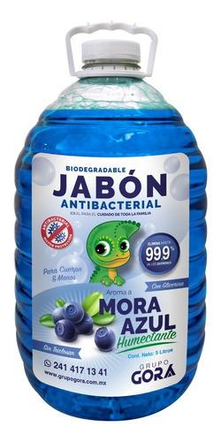 Imagen 1 de 5 de Jabón Líquido Antibacterial Para Manos Mora Azul 5 Litros