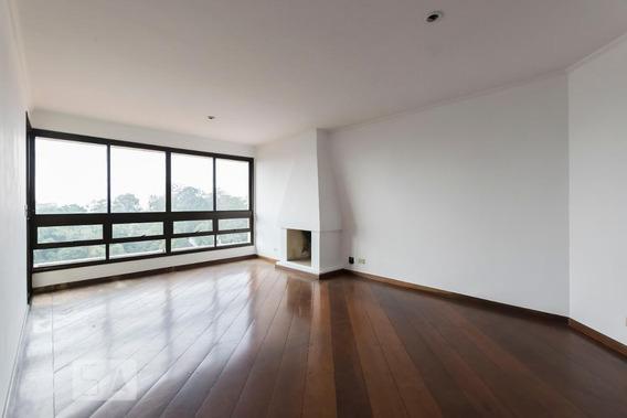 Apartamento Para Aluguel - Vila Mariana, 3 Quartos, 113 - 893102598