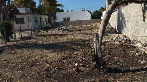 Oportunidad!!! Se Vende Terreno En El Centro Del Puerto De Chelem.