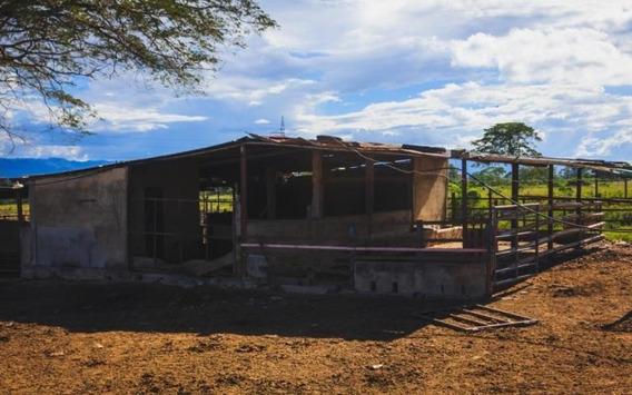 Terrenos En Venta Yaracuy San Felipe 21 4288 J&m